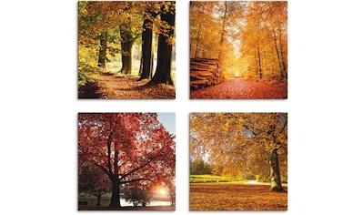Artland Leinwandbild »Herbstlandschaft«, Bäume, (4 St.) kaufen