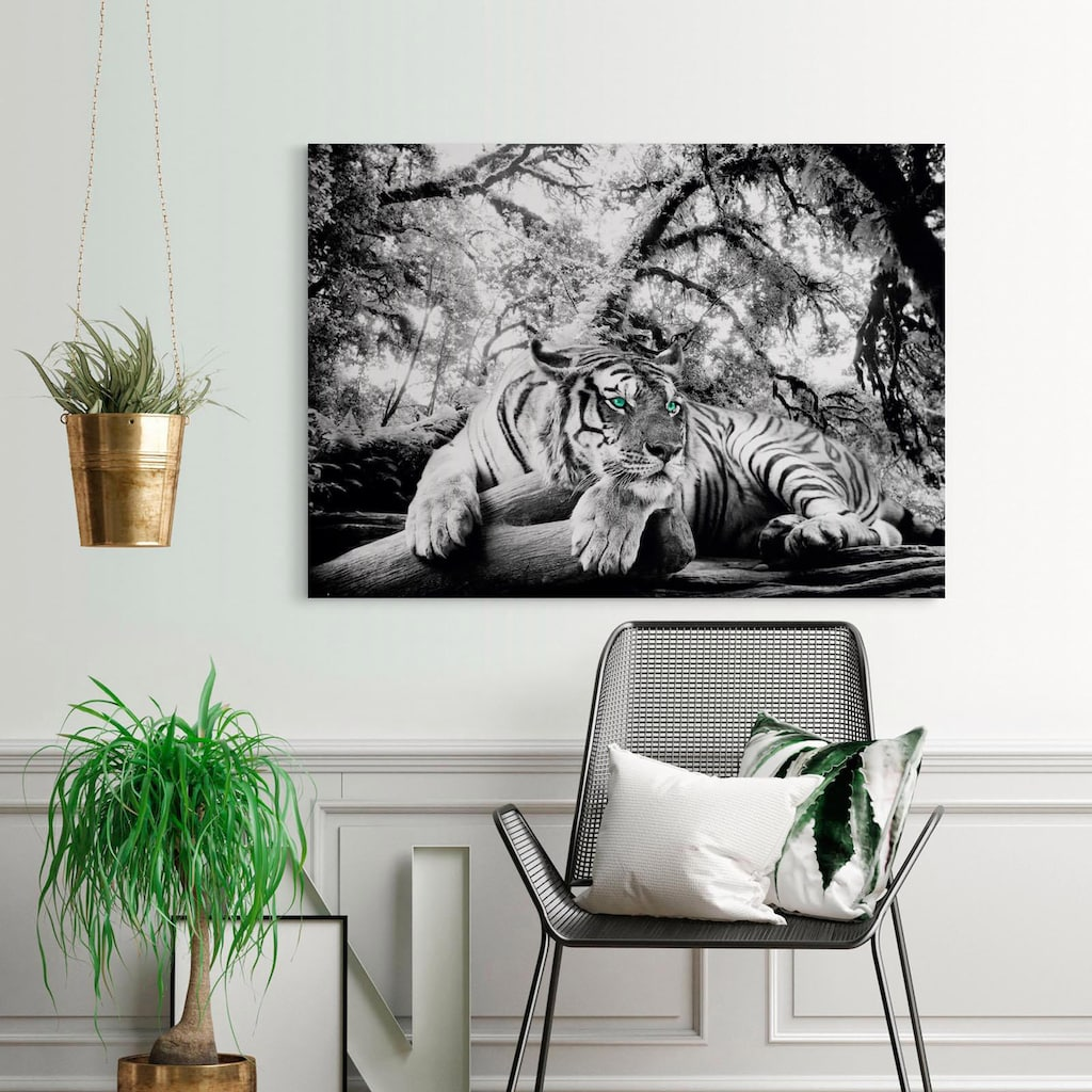 Home affaire Deco-Panel »Tiger guckt dich an«