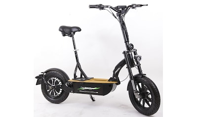 "Didi THURAU Edition E - Scooter »Elektroroller ""Eco - Tourer"" 20 km/h Basic«, 600 Watt, 20 km/h kaufen"