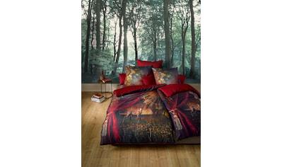 fleuresse Wendebettwäsche »Bed Art S 3759«, Vorhang auf kaufen