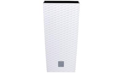 Prosperplast Pflanzkübel »Rato square«, BxTxH: 32,5x32,5x61 cm kaufen