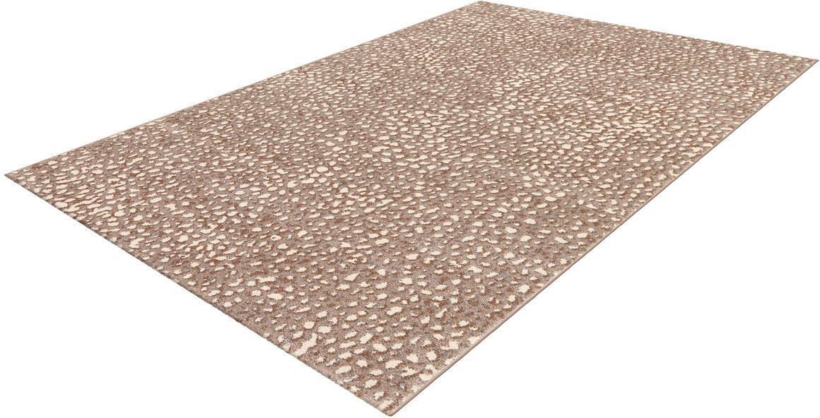 Teppich Move 4447 Arte Espina rechteckig Höhe 18 mm maschinell gewebt
