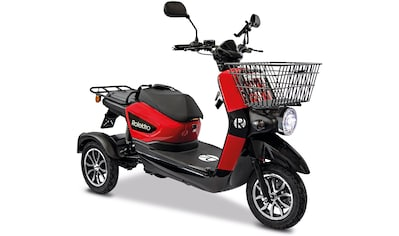Rolektro Elektromobil »Rolektro E-Carrier 25 V.3 Lithium ohne Koffer«, 1000 W, 25 km/h, (Korb) kaufen