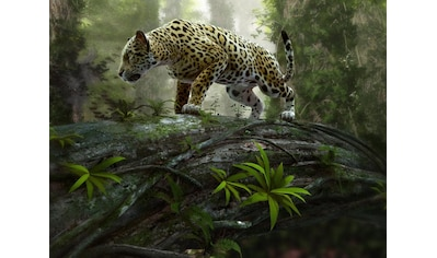 Home affaire Fototapete »Jaguar on the Prowl« kaufen