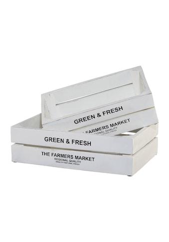 Kiste »Green&Fresh«, 2er Set kaufen