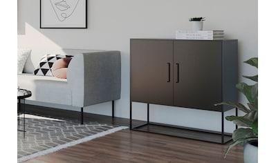 Homexperts Kommode »Rich«, designorientierte Kommode mit Metalltüren kaufen