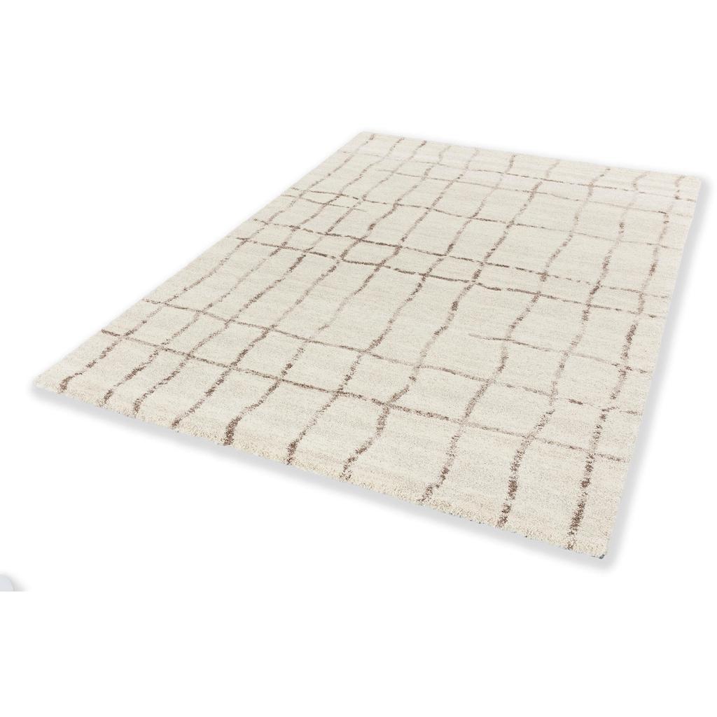 Teppich, »Savona 193«, ASTRA, rechteckig, Höhe 20 mm, maschinell gewebt