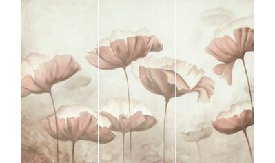 Wandbild »Mohnblumen  -  Wandbild« (Set) kaufen