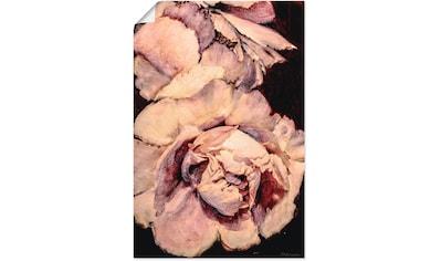 Artland Wandbild »Pfingsrose III« kaufen