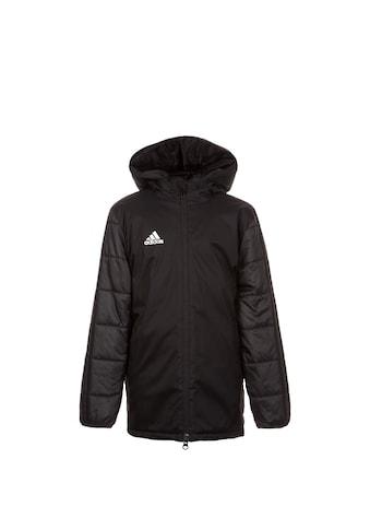 adidas Performance Winterjacke »18« kaufen