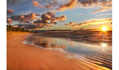 Papermoon Fototapete »Lake Huron Dunes«, Vliestapete, hochwertiger Digitaldruck kaufen