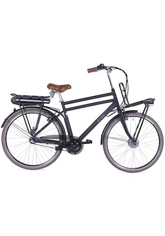 LLobe E-Bike »Rosendaal Gent 130864«, Gepäckträger vorne kaufen