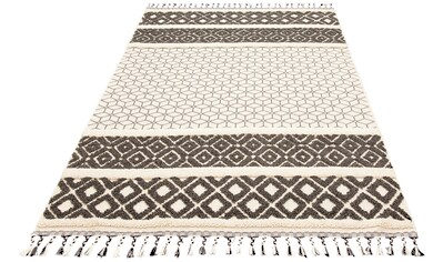 Teppich, »Arian«, Home affaire, rechteckig, Höhe 18 mm, maschinell gewebt kaufen