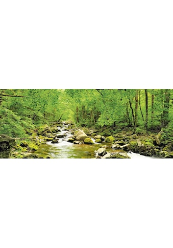 Home affaire Glasbild »tupikov: Herbstwald, Fluß Smolny« kaufen