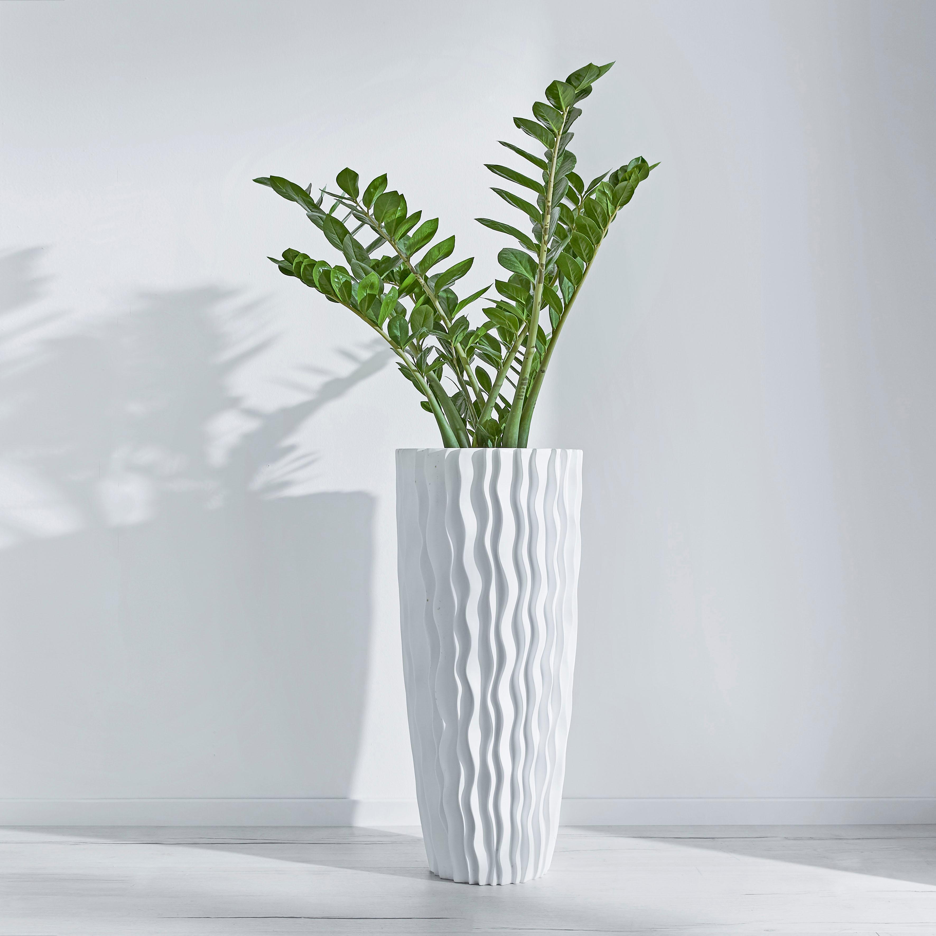 Schneider Bodenvase Schneider | Dekoration > Vasen > Bodenvasen | Weiß | Schneider