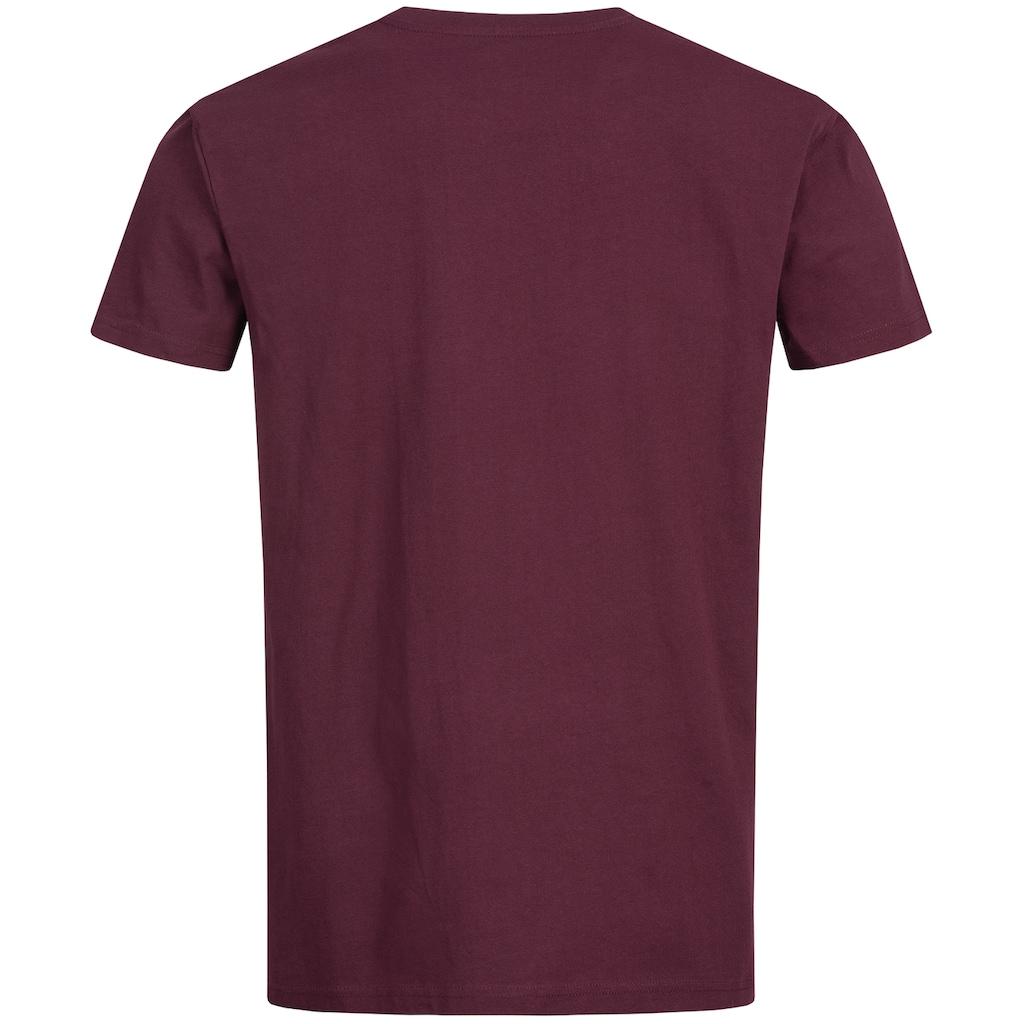 Lonsdale T-Shirt »Wellington«, mit tollem Print