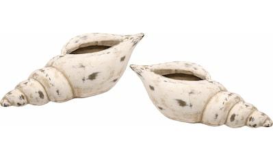 I.GE.A. Dekoschale »Keramik-Schale Muschel« kaufen