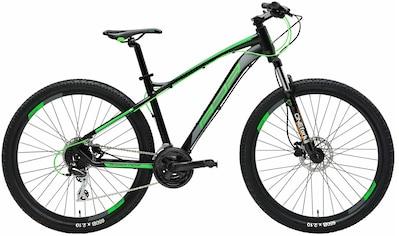 Adriatica Mountainbike, 24 Gang, Shimano, ACERA Schaltwerk kaufen