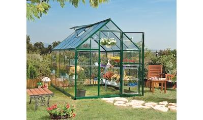 PALRAM Gewächshaus »Hybrid«, Größe 4, B/T/H: 185/306/208 cm, grün kaufen