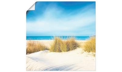 Artland Wandbild »Gras auf Sanddünen«, Strand, (1 St.), in vielen Größen & Produktarten - Alubild / Outdoorbild für den Außenbereich, Leinwandbild, Poster, Wandaufkleber / Wandtattoo auch für Badezimmer geeignet kaufen