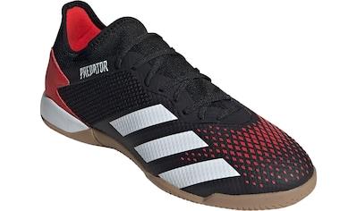 adidas Performance Fußballschuh »Predator 20.3 L IN« kaufen