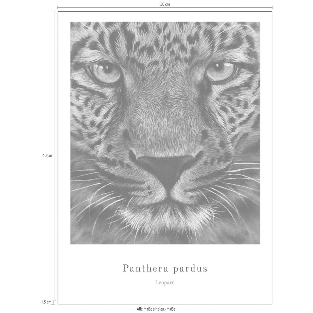 Spiegelprofi GmbH Bild »Panther«, mit Rahmen