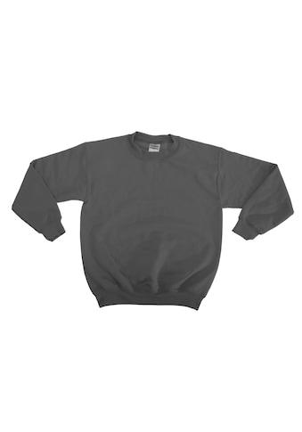 Gildan Rundhalspullover »Kinder Sweatshirt mit Rundhalsausschnitt (2 Stück/Packung)« kaufen