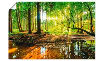 Artland Wandbild »Wald mit Bach«, Wald, (1 St.) kaufen