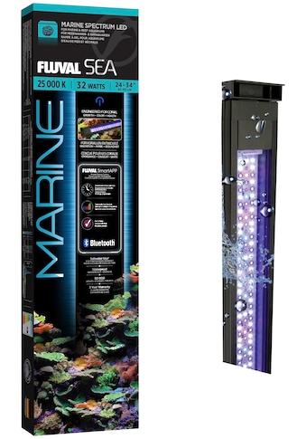 FLUVAL LED Aquariumleuchte »FS Marine 3.0 LED«, 61-85 cm kaufen