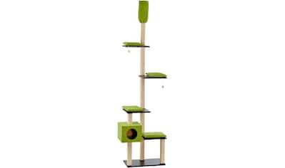 SILVIO DESIGN Kratzbaum - Deckenspanner »Bashira«, B/T/H: 73/47/230 - 260 cm, grün kaufen