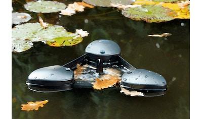 Oase Skimmer »SwimSkim 25« kaufen