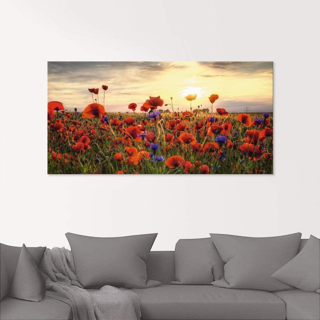 Artland Glasbild »Mohnblumenwiese«, Blumen, (1 St.)