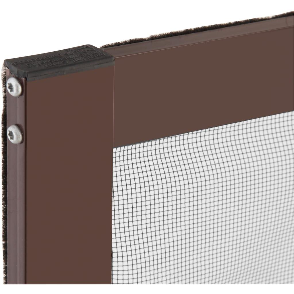 hecht international Insektenschutz-Fenster »MASTER SLIM«, braun/anthrazit, BxH: 80x100 cm