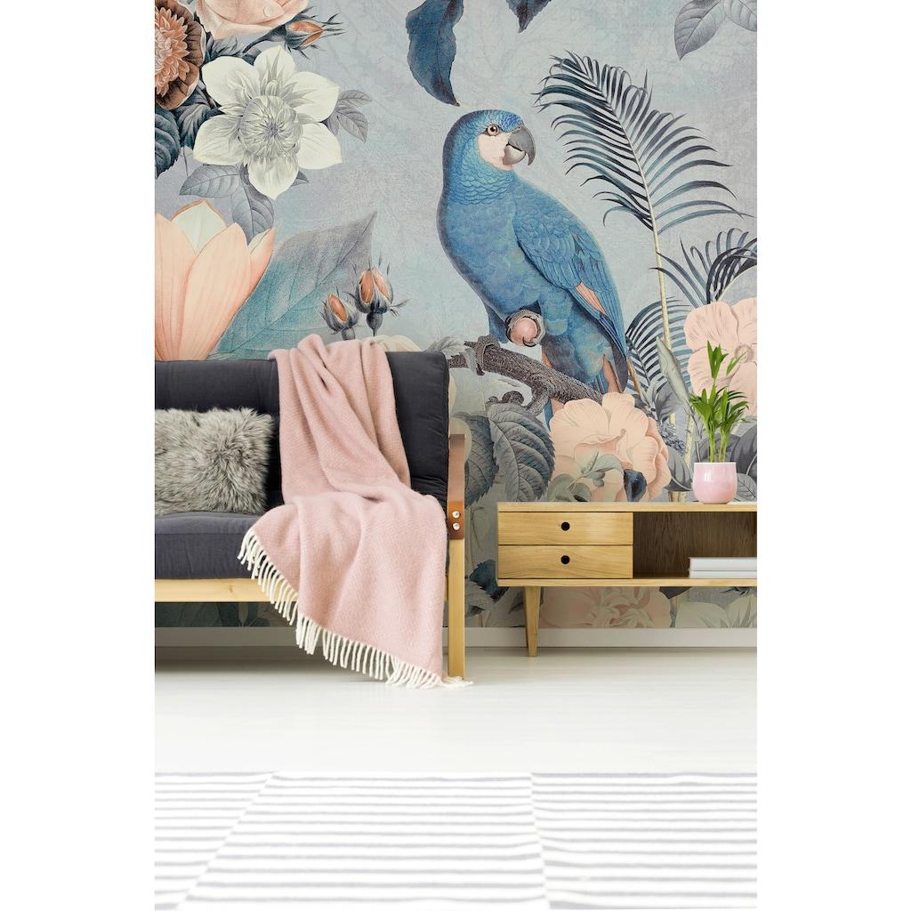 living walls Fototapete »ARTist Jungle Rendevous«, Blumen Rosen Papageie, Vlies, glatt