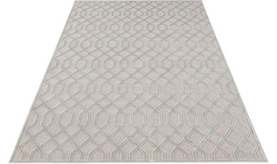 MINT RUGS Teppich »Caine«, rechteckig, 4 mm Höhe, Viskose Glanz mit Hoch-Tief Struktur, Wohnzimmer kaufen