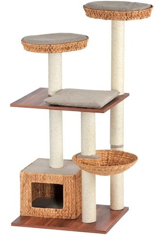 SILVIO DESIGN Kratzbaum »Linus«, B/T/H: 70/50/142 cm, walnussdekor/sandfarben kaufen