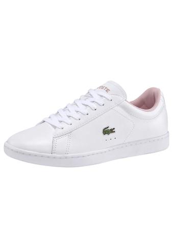 Lacoste Sneaker »CARNABY EVO 0120 5 SFA« kaufen