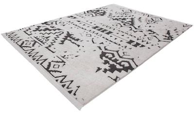 Teppich, »Agadir 110«, Kayoom, rechteckig, Höhe 23 mm, maschinell gewebt kaufen
