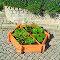 promadino Kräuterbeet, BxTxH: 122x111x27 cm