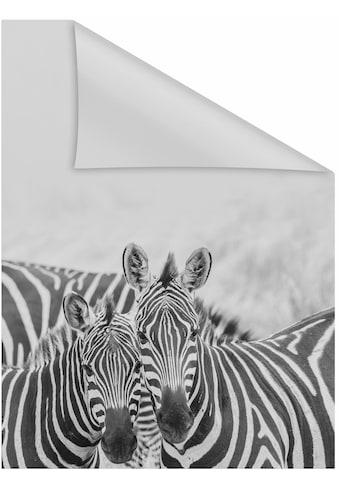 Fensterfolie, »Zebra«, LICHTBLICK, blickdicht, strukturiert kaufen