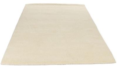 THEKO Wollteppich »Royal Dou 1«, rechteckig, 22 mm Höhe, reine Wolle, echter Berber,... kaufen