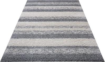 DELAVITA Hochflor-Teppich »Nelson«, rechteckig, 30 mm Höhe, Wohnzimmer kaufen