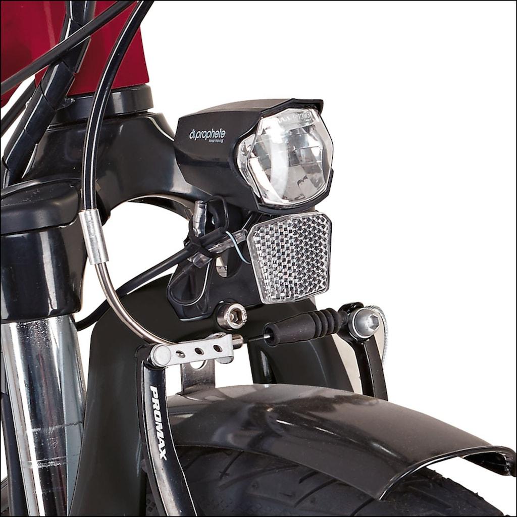 Didi THURAU Edition S-Pedelec »Alu City Rad-Roller 3in1«
