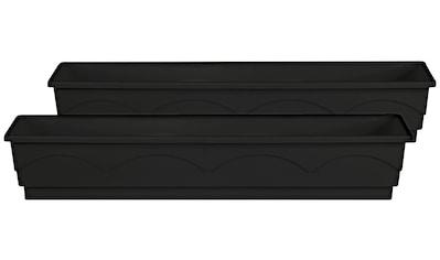 Emsa Blumenkasten »LAGO«, 2er - Set, BxTxH: 100x22x18 cm, anthrazit kaufen