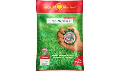 WOLF-Garten Rasensamen »Turbo« kaufen
