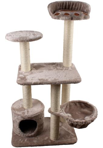 SILVIO DESIGN Kratzbaum »Molly«, B/T/H: 40/60/116 cm, grau kaufen
