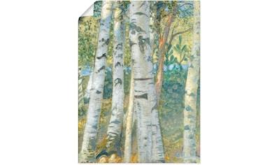 Artland Wandbild »Birkenstämme. 1910«, Bäume, (1 St.), in vielen Größen & Produktarten... kaufen