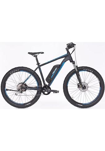 FISCHER Fahrräder E-Bike »EM 1725.1«, 10 Gang, Shimano, Deore, Heckmotor 250 W kaufen