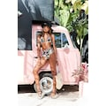 s.Oliver Beachwear Highwaist-Bikini-Hose »Herbst«