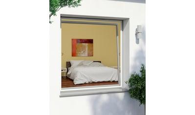 Windhager Insektenschutz-Fenster »RHINO«, BxH: 130x150 cm kaufen